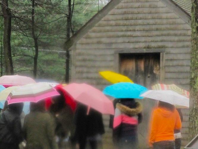 http://www.wunderbar.fr/horserie/files/gimgs/3_parapluie.jpg